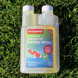Barleystraw Extract