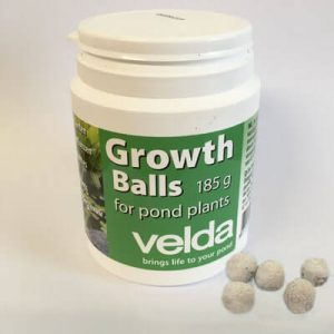 Feed balls for aquatic plants - pack of approx 50 feed balls for pond plant nutrition