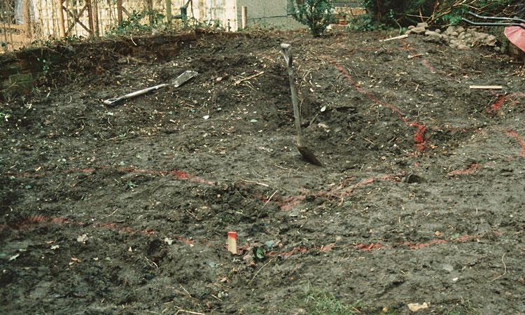 dig a bog garden