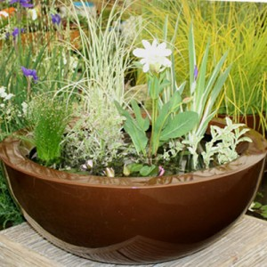 80cm container pond in Dark Copper