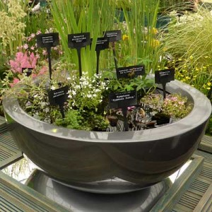 Gunmetal fibreglass container pond planted for sun