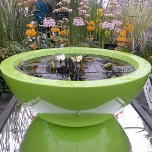 60cm container pond in Lime Green planted for sun