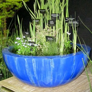 80cm container pond in Weeping Blue Gunmetal fibreglass container pond planted for shade