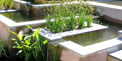 design a formal raised pond