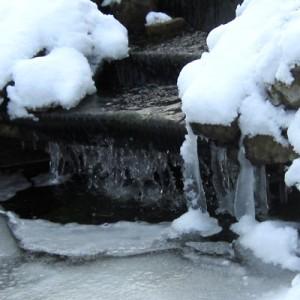 Snow on the pond