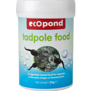 Tadpole food - early stage