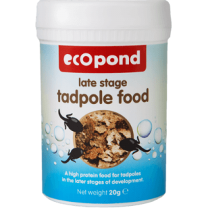 Tadpole food - late stage