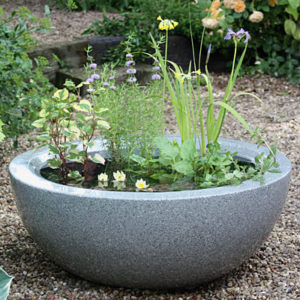 Container pond in fibreglass with a Granite effect finish planted for sun