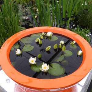 Container Pond in orange coloured fibreglass