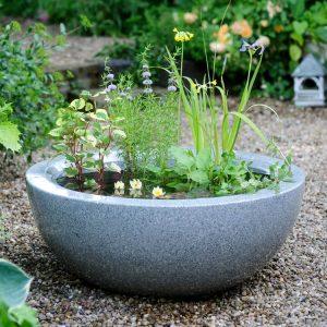 Which? Gardening - Ponds in Pots