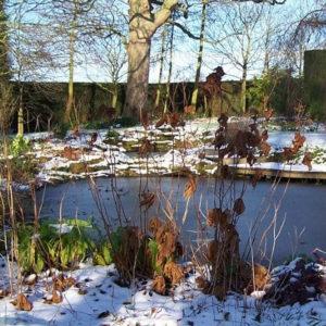 Colder pond temperatures!