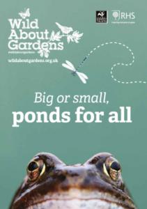 Wild About Ponds