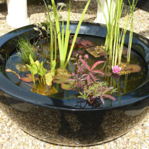 80cm container pond in black