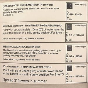 Information ticket showing plant details and Plant Passport Number