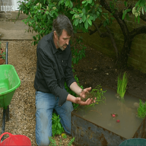 Adam Frost on Gardeners World - container pond and plants