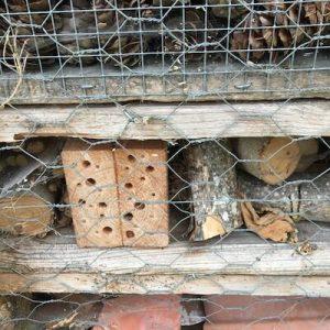 detail of pallet hibernaculum